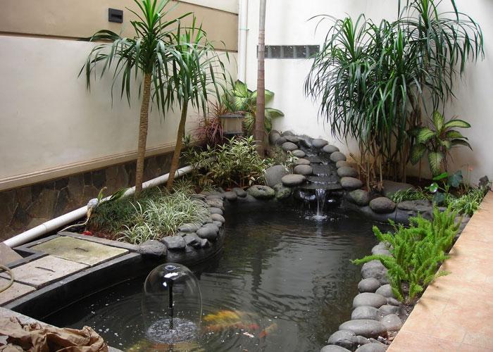 kolam ikan rumah minimalis